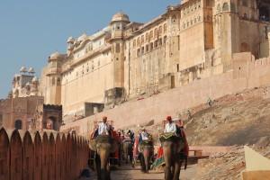 Amber-Fort-Jaipur2