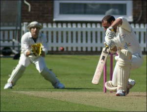 cricket-300x229