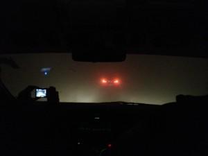 fog-india1-300x225