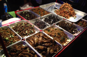 insects-food-300x199
