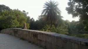 parque-delhi-300x168